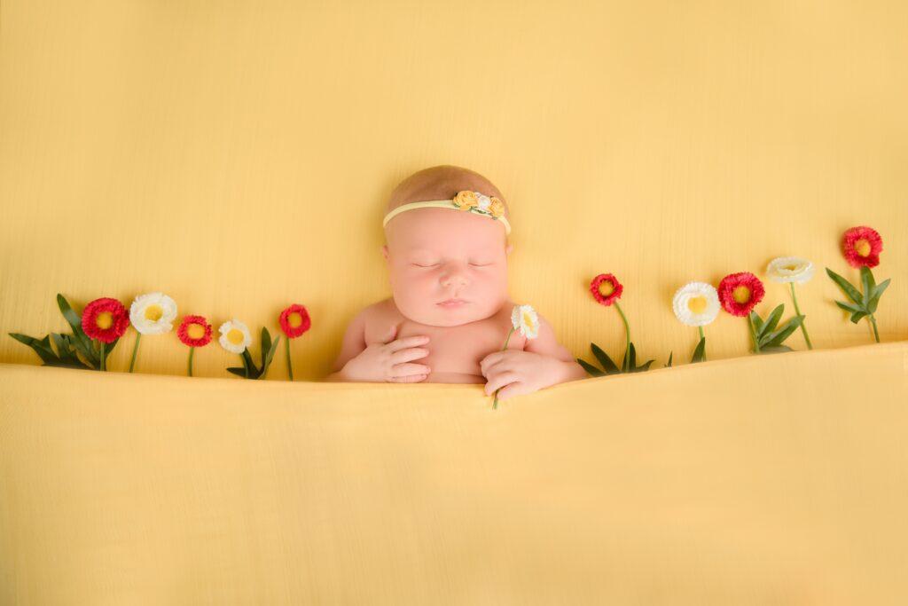 20210421  85S8730 Edit Edit 1024x683 - Newborn Photography