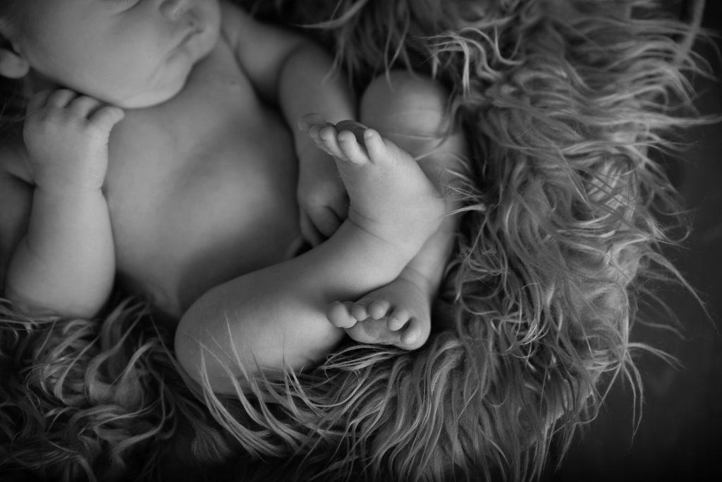 New Hampshire Newborn Photographer 5 1024x683 - Newborn Photography