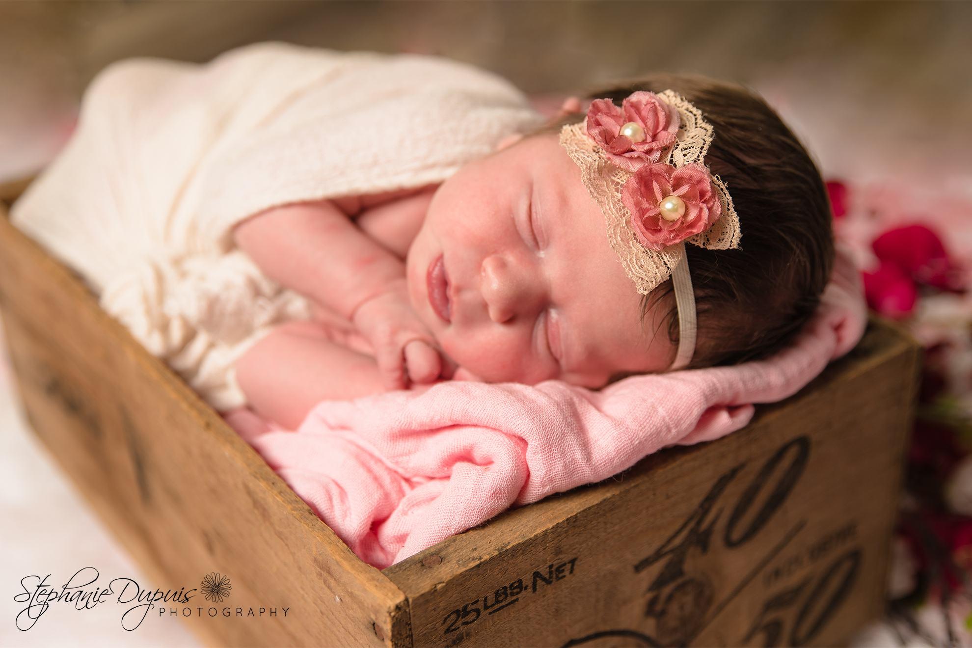 Trisha Eckherdt Infant 1003 - Portfolio: Rayia - Infant Session