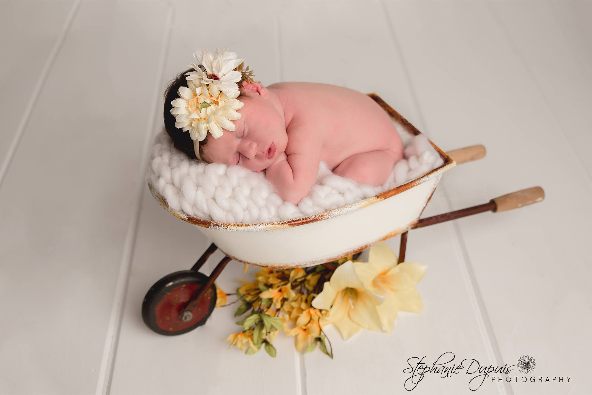 Trisha Eckherdt Infant 1014 - Portfolio: Rayia - Infant Session