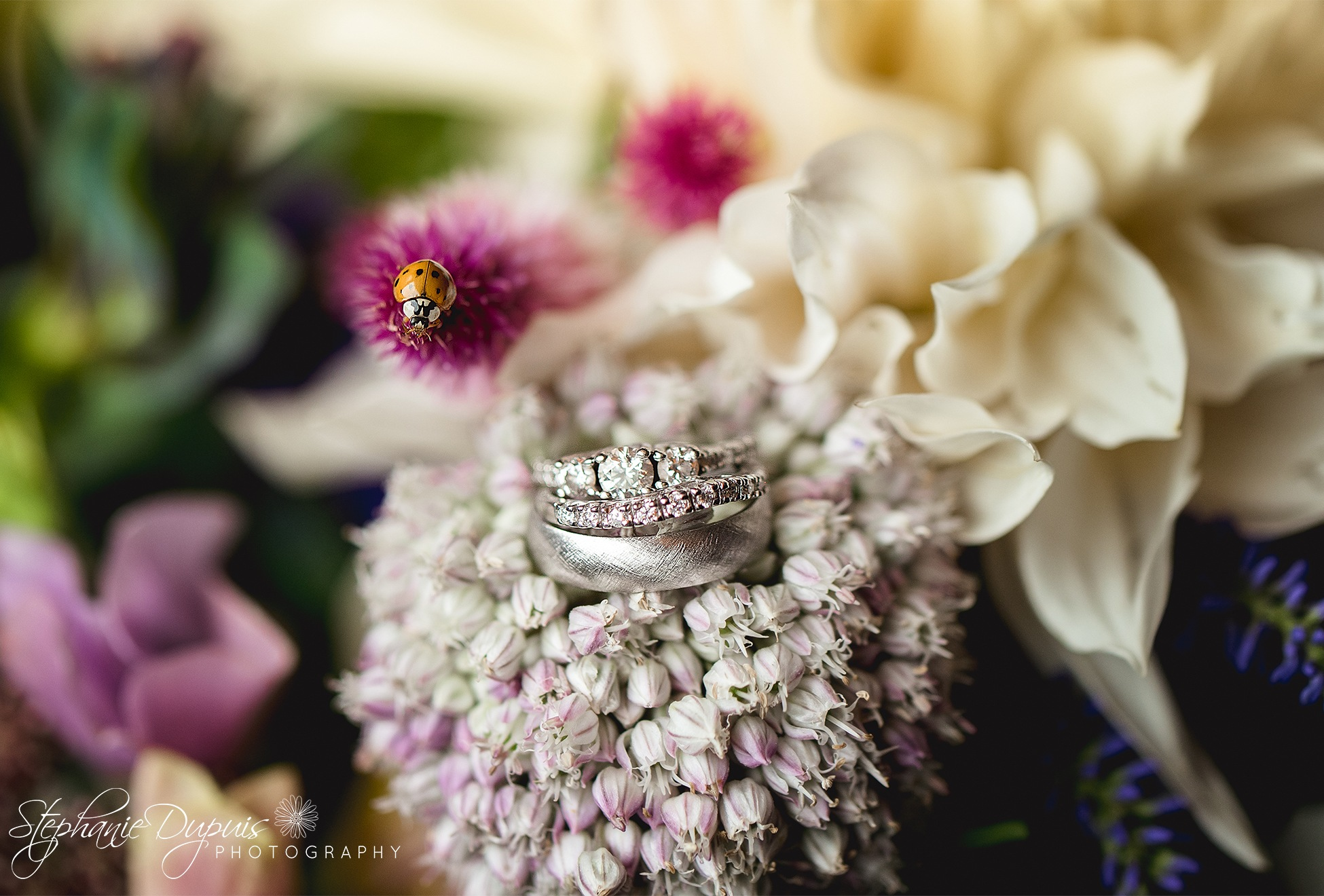 Hicks Wedding 2 - Portfolio: Hick's Wedding