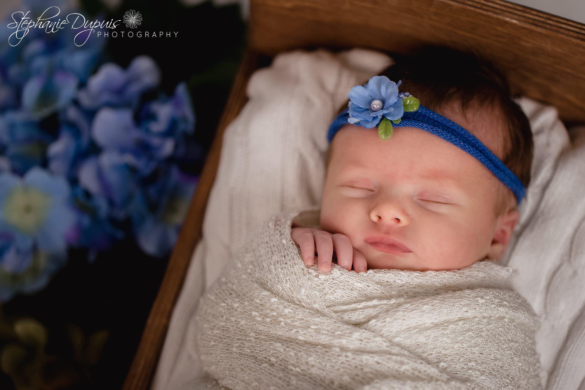 Abbott 5 - Portfolio: Khloe Newborn Session