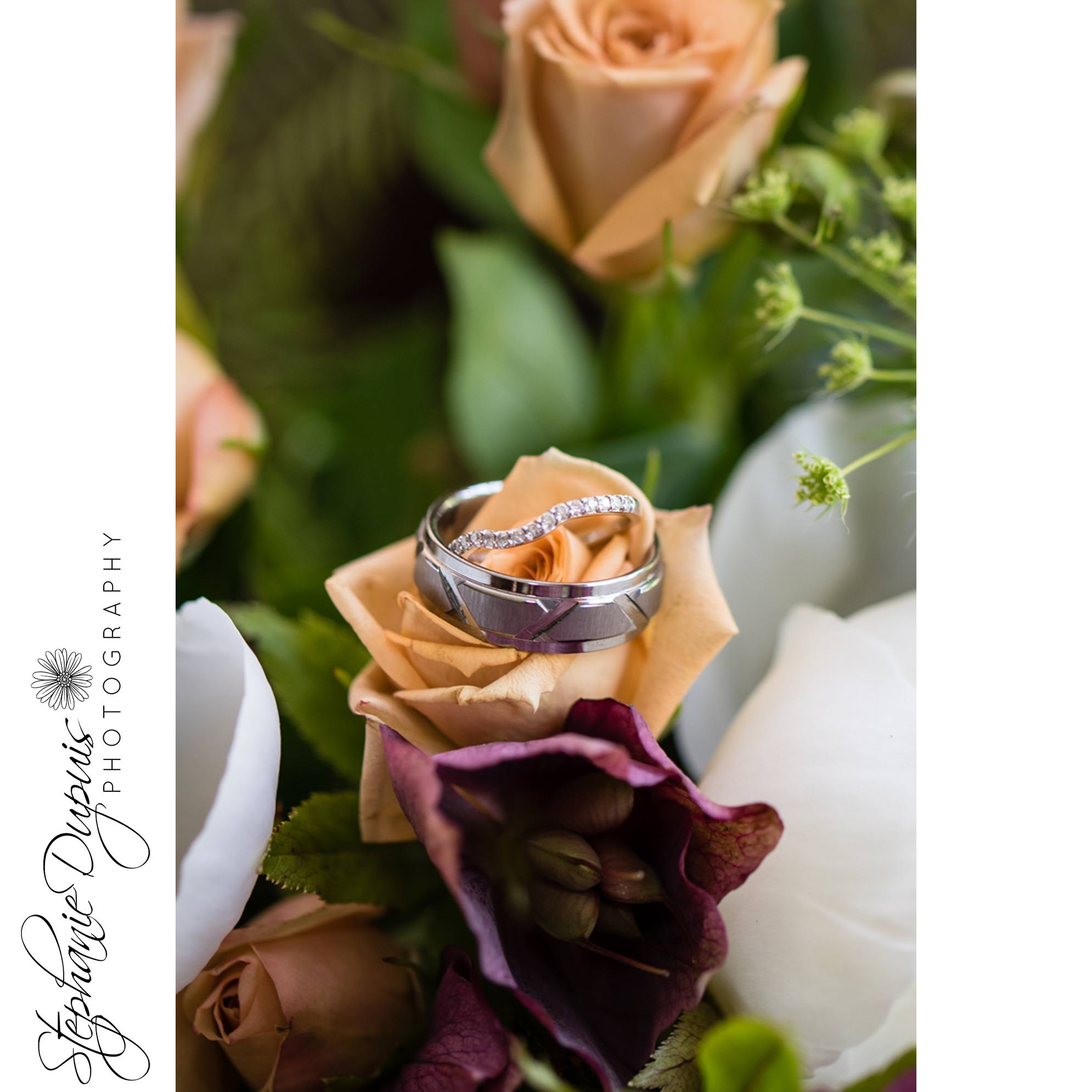 Pushee 3 - Portfolio: Pushee Wedding