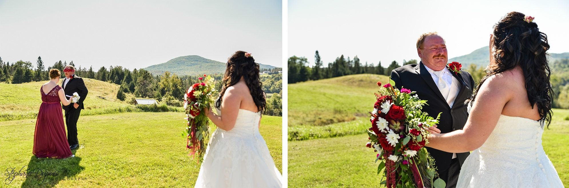 Jefferson Wedding Photographer 03 2 - Portfolio: Brown Wedding