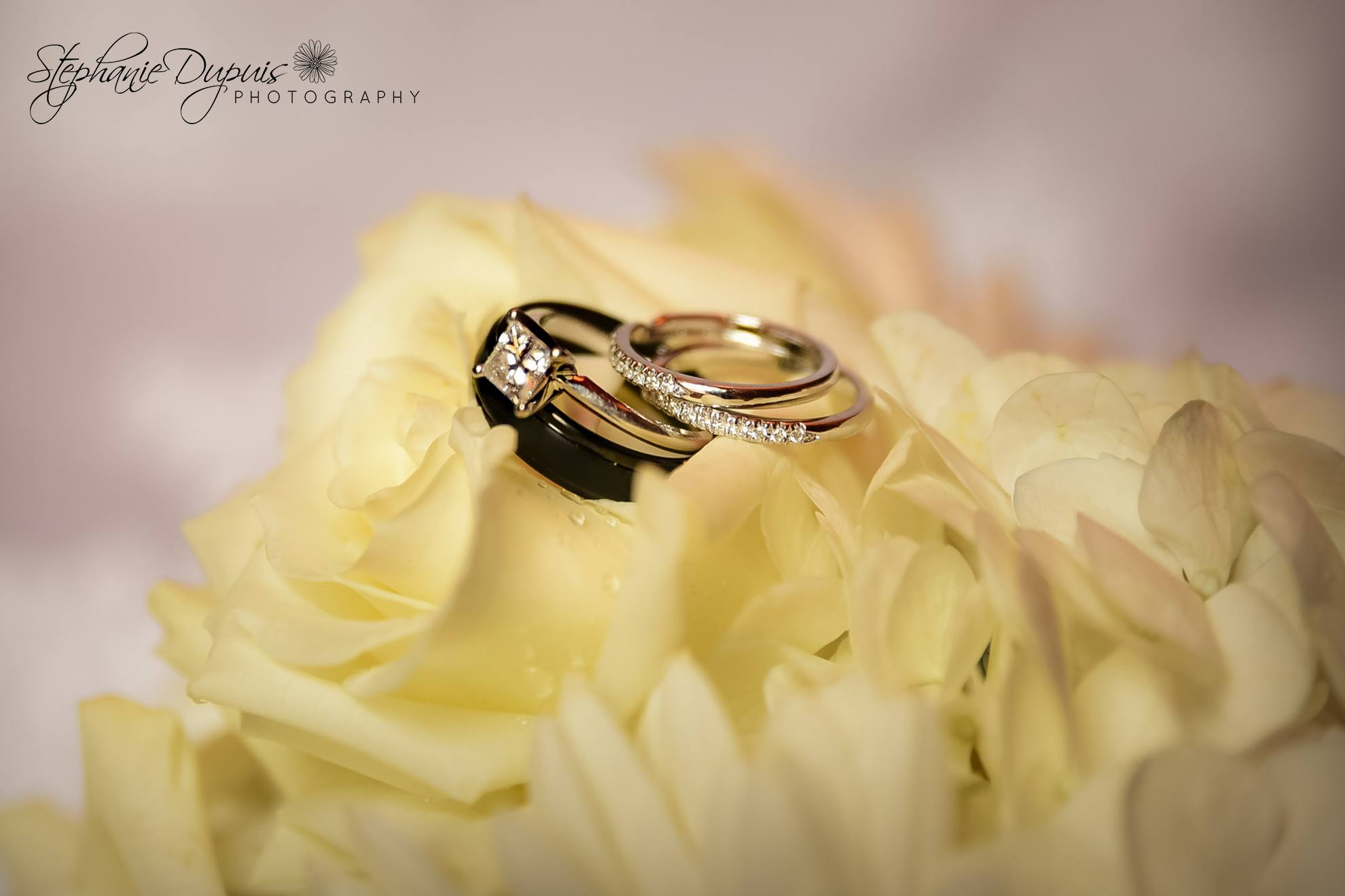 Littleton Wedding Photographer 02 5 - Portfolio: Nason Wedding