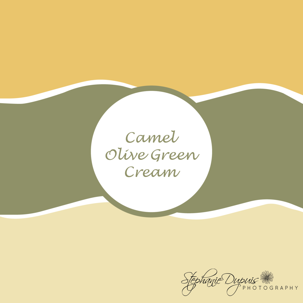 Winter Wedding Colors camel olive green cream 1024x1024 - Winter Wedding Colors 2021
