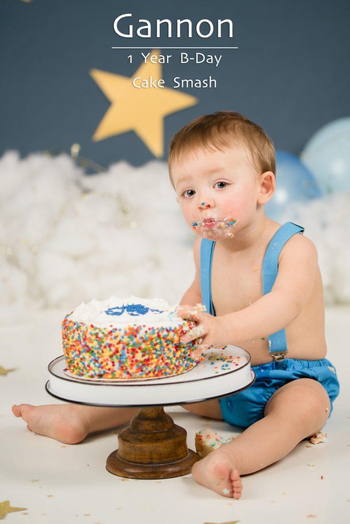 Bisson Cake Smash cover 684x1024 - Portfolio