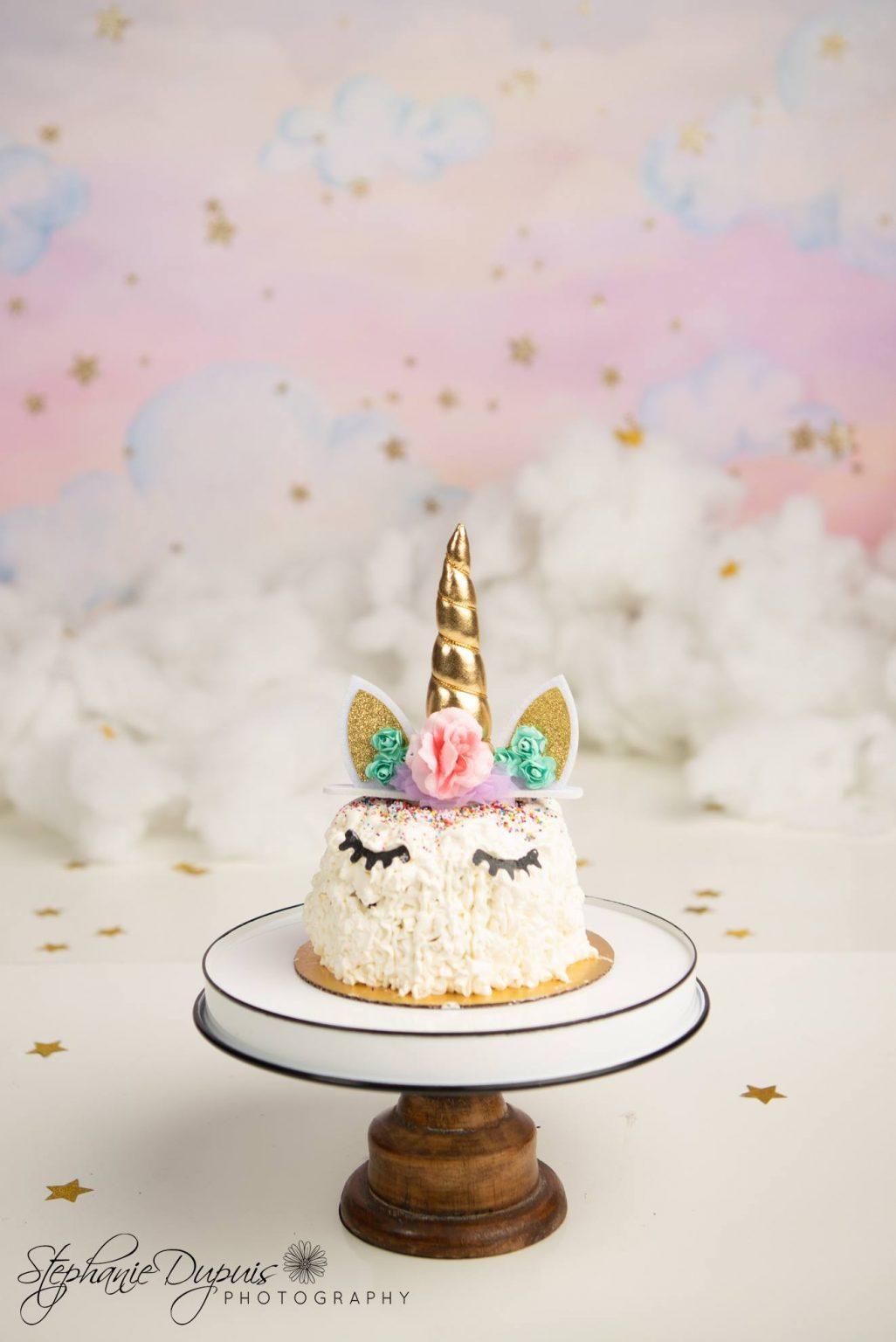 jones cake smash 1 1026x1536 - Portfolio: Warryn Cake Smash